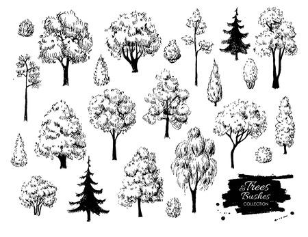 Illustration pour Big set of hand drawn tree sketches. Artistic drawing. - image libre de droit