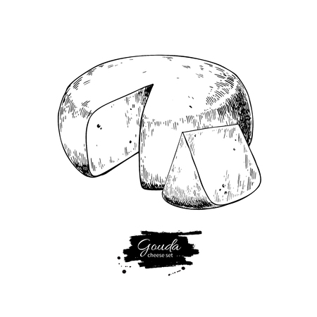 Illustration for Gouda cheese block drawing. Vector hand drawn food sketch. Engraved Slice cut. - Royalty Free Image