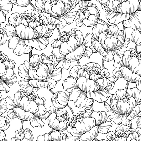 Illustration for Peony flower seamless pattern drawing. - Royalty Free Image