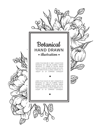 Illustration for Flower vintage border with peony and roses botanical drawing. - Royalty Free Image