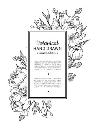 Ilustración de Flower vintage border with peony and roses botanical drawing. - Imagen libre de derechos