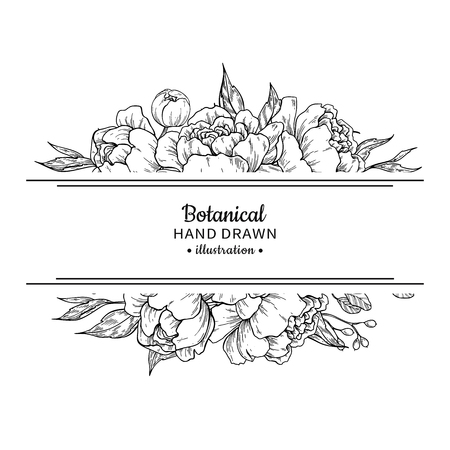 Illustration pour Flower vintage border with peony and roses botanical drawing in black and white Illustration. - image libre de droit