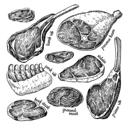 Ilustración de Raw meat set vector drawing. Hand drawn beef steak, pork ham, lamb rib, minced chicken forcemeat. - Imagen libre de derechos