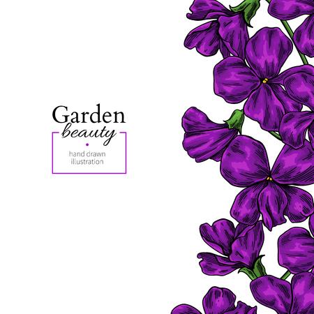 Illustration for Violet flower drawing. Vector hand drawn floral frame. Viola border sketch. - Royalty Free Image