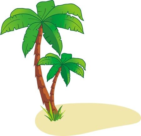 Illustration pour Palm on island - image libre de droit