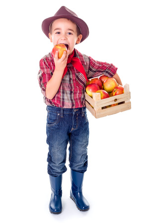 Little agriculturist boy standing with crate full of apples, tasting
