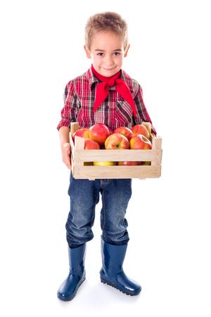 Little farmer boy holding big crate full of ripe apples