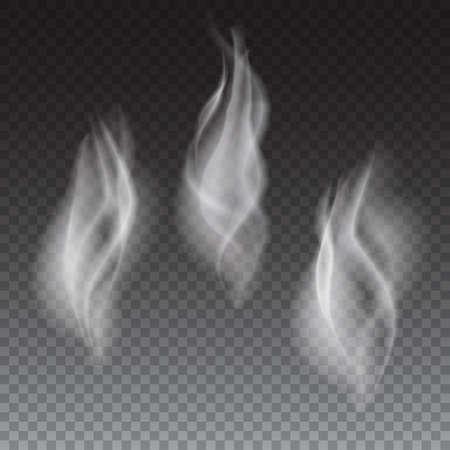 Ilustración de Delicate white cigarette or coffe smoke waves on transparent background vector illustration - Imagen libre de derechos