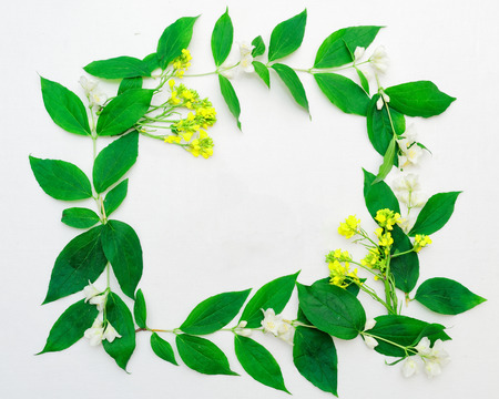 Wreath of jasmine flowers and leaves and yellow field flowers on white background. Flat lay.
