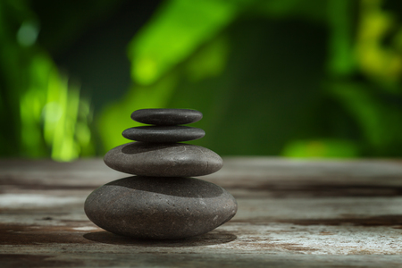 Foto de close up view of flower and gray stones on color back - Imagen libre de derechos