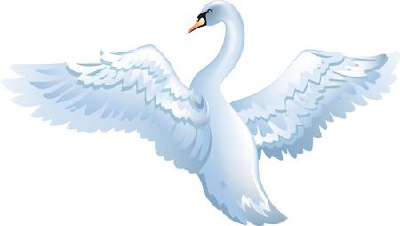 Illustration pour elegant swan isolated on white background - image libre de droit
