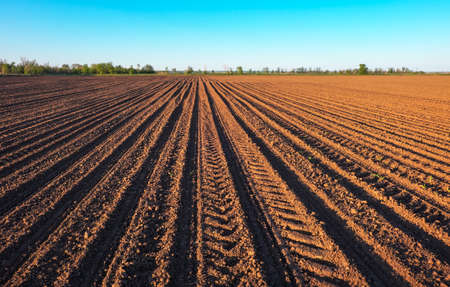 Photo pour Preparing field for planting. Plowed soil  in spring time with blue sky. - image libre de droit