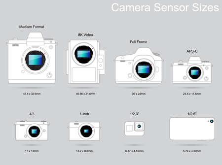 Illustrazione per Camera Sensor Size Photography Guide - Immagini Royalty Free
