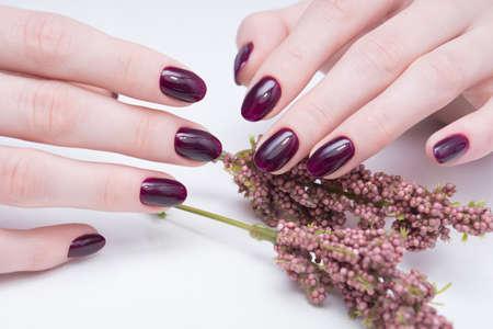 Foto de Beautiful manicure and nail art. Natural nails and gel polish. - Imagen libre de derechos