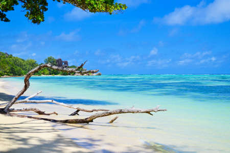 Photo for seychelles dream beach - Royalty Free Image