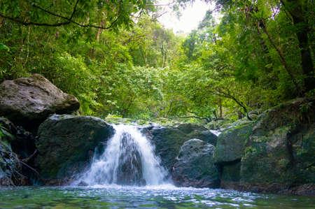 Foto de Tropical Paradise Madagascar - Imagen libre de derechos
