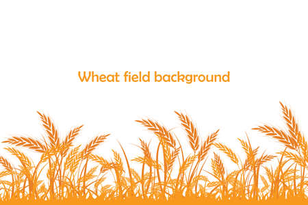 Illustration for Vector silhouette of wheat. Wheat in the field on a white background - Royalty Free Image