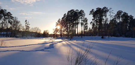 sunset in winter and long shadows from trees in the snow