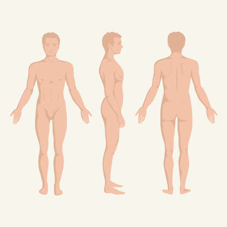 Photo pour man body anatomy, front, back and side standing human pose  - image libre de droit