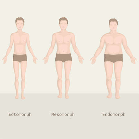 Illustration for man body types, from fat to fitness, before and after  - Royalty Free Image