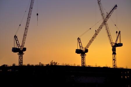 Industrial construction cranes silhouettes. sunset. UAE, Dubai