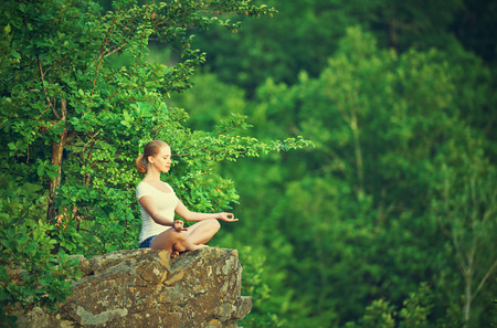 Photo pour woman meditating in lotus posture, doing yoga on top of the mountain on a rock in nature in the forest - image libre de droit
