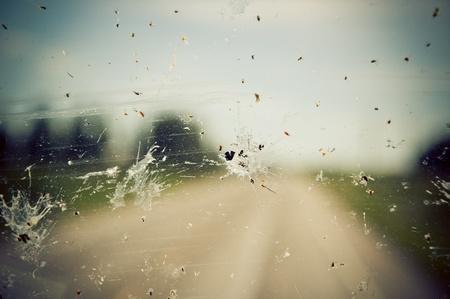 Windshield splatter