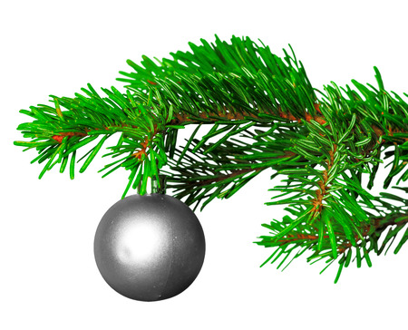 Photo pour christmas ball on fir branch isolated on white background - image libre de droit