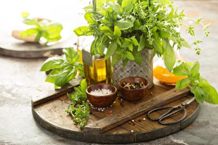 Photo pour Cooking with fresh herbs - image libre de droit