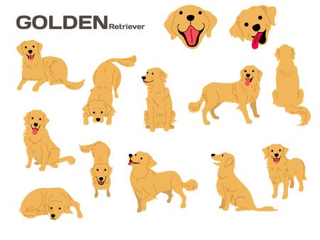 Illustration for golden retriever illustration,dog poses,dog breed - Royalty Free Image