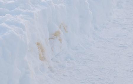 Foto de Excrement of Pets in the snow in the winter Park. - Imagen libre de derechos
