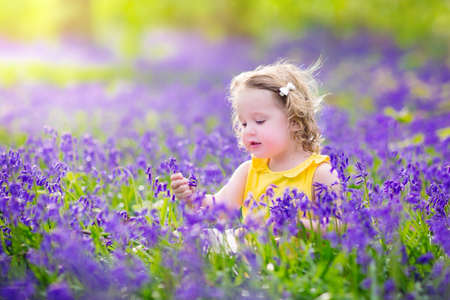 Foto de Adorable toddler girl with curly hair wearing a yellow dress playing with purple bluebell flowers in a sunny spring forest on a warm evening with beautiful sunset - Imagen libre de derechos