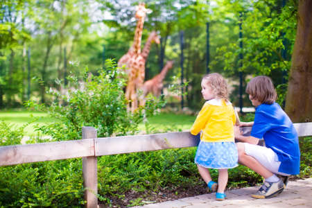 Photo pour Happy school boy and his toddler sister cute little girl with curly hair wearing a dress having fun together in a zoo watching giraffes and other animals on a day trip during summer vacation - image libre de droit