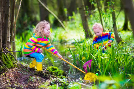 Photo for Children playing outdoors. Two preschooler kids catching frog with colorful net. Little boy and girl fishing in a forest river in summer. Adventure kindergarten day trip into wild nature, young explorer hiking and watching animals. - Royalty Free Image