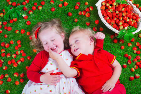 Photo pour Child eating strawberry. Little girl and baby boy play and eat fresh ripe strawberries. Kids with fruit relaxing on a lawn. Children summer fun on a farm picking berry. - image libre de droit