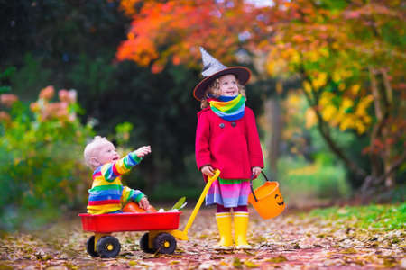 Photo for Little girl in witch costume and baby boy in wheel barrow holding a pumpkin playing in autumn park. Kids at Halloween trick or treat. Toddler with jack-o-lantern. Children with candy bucket in forest. - Royalty Free Image
