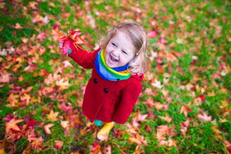 Photo for Little girl with yellow leaf. Child playing with autumn golden leaves. Kids play outdoors in the park. Children hiking in fall forest. Toddler kid under a maple tree on a sunny October day. - Royalty Free Image