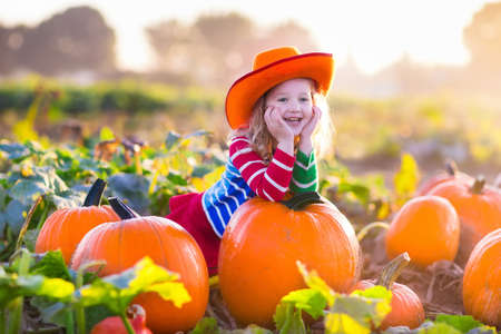 Foto de Little girl picking pumpkins on Halloween pumpkin patch. Child playing in field of squash. Kids pick ripe vegetables on a farm in Thanksgiving holiday season. Family with children having fun in autumn - Imagen libre de derechos