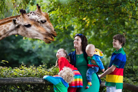 Foto de Mother and children, school student, little toddler boy, preschool girl and baby watching and feeding giraffe animals at the zoo. Wildlife experience for parents and kids at animal safari park. - Imagen libre de derechos