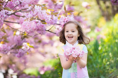 Photo pour Little happy girl playing under blooming cherry tree with pink flowers. Child holding sakura blossom. Summer fun for family with kids outdoors in a beautiful spring garden. Kid with flower on Easter. - image libre de droit