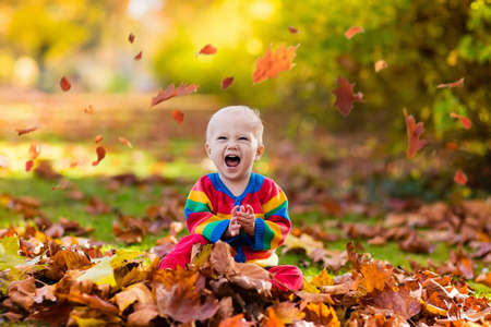 Foto de Kids play in autumn park. Children throwing yellow and red leaves.Baby with oak and maple leaf. Fall foliage. Family outdoor fun in autumn. Toddler kid or preschooler child in fall. - Imagen libre de derechos