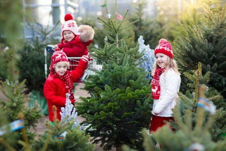 Photo pour Family selecting Christmas tree. Kids choosing freshly cut Norway Xmas tree at outdoor lot. Children buying gifts at winter fair. Boy and girl shopping for Christmas decoration at market. Holiday time - image libre de droit