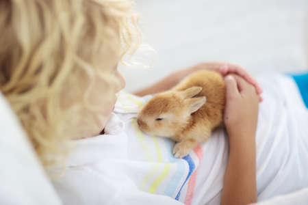 Photo pour Child playing with white rabbit. Little boy feeding and petting white bunny. Easter celebration. Egg hunt with kid and pet animal. Children and animals. Kids take care of pets. Spring Easter garden. - image libre de droit