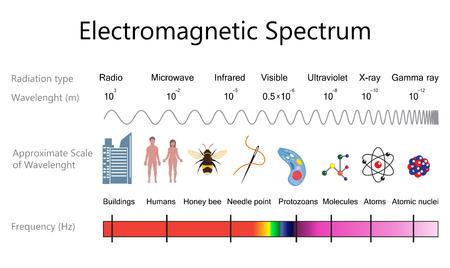 Ilustración de Electromagnetic spectrum diagram. - Imagen libre de derechos