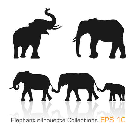 Set of silhouette elephants in different poses -Vector illustration