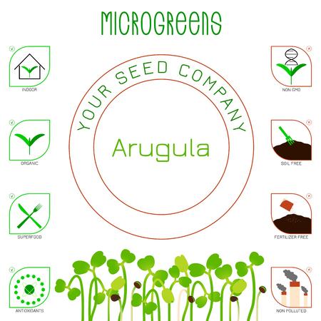 Illustrazione per Microgreens Arugula. Seed packaging design. Icons - indoor, organic, superfood, antioxidants, non gmo, soil free, fertilizer free, non polluted - Immagini Royalty Free
