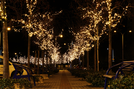 Photo for A beautiful christmas alley in the Frydek Mistek city. Christmas coming to Czech republic. Beautiful christmas trees and bulbs near square. - Royalty Free Image