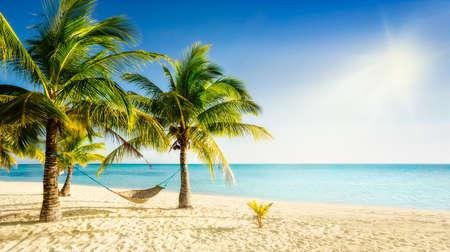 Foto de Sunny carribean beach with palmtrees and traditional braided hammock - Imagen libre de derechos