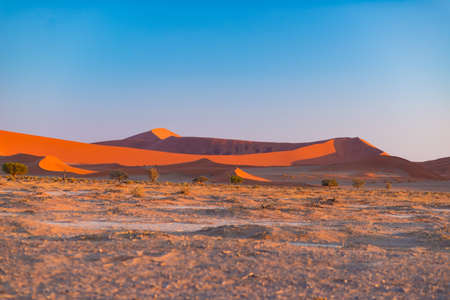 Photo for Sand dunes in the Namib desert at dawn, roadtrip in the wonderful Namib Naukluft National Park, travel destination in Namibia, Africa. Morning light, mist and fog.  - Royalty Free Image