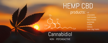 Photo pour Hemp CBD oil, Medical marijuana products including cannabis leaf. Herbal organic medicine product. Natural herb essential from nature. Chemical formula of cannabidiol - image libre de droit